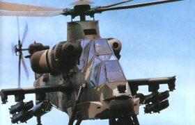 南非CSH-2石茶...