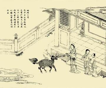 孔子[儒家學派創始人]