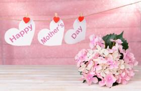 母親節[感謝母親的節日]